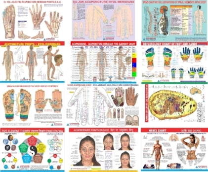 Buy Online  Acupressure | Acupuncture | Alternative Therapy Products and Instruments Products & Healthcare Products
