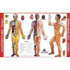 Meridianology Chart - Acupuncture