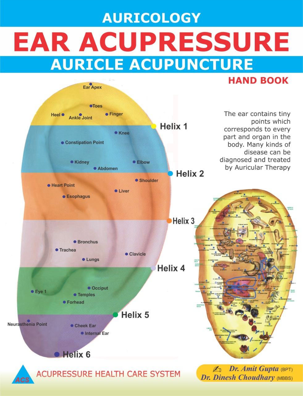 Ear Acupuncture/Acupressure-Auricology (eng)  - 571