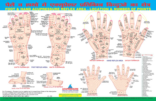 Diploma in Reflexology (D.R.T)